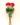 lillekimp_rooskips_v